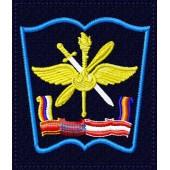 Шеврон Военно-воздушной академии им Жуковского и Гагарина г.Воронеж